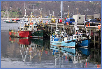 Boats in Ullapool harbour