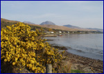 Paps of Jura from the campsite
